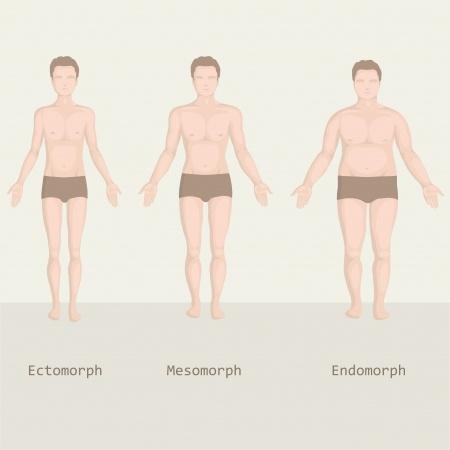 Træn efter kropstype – Hvilken er du?